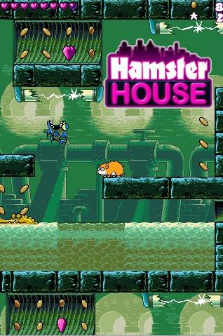 hamsterhouse01