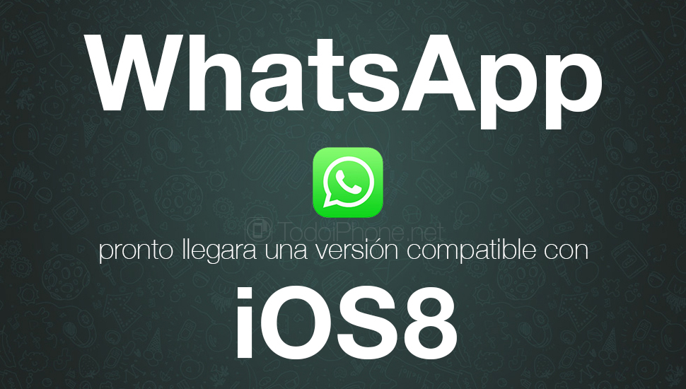 WhatsApp-iOS-8-Rumor