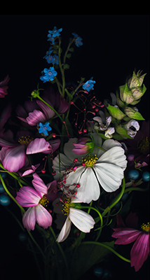 Fondo-Pantalla-iPhone-6-flores-min